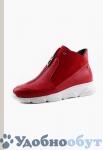 Ботинки Dibrera арт. 33-9110