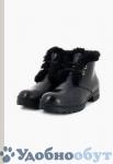 Ботинки Baldinini арт. 33-6615