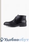 Ботинки Fabi арт. 22-2106