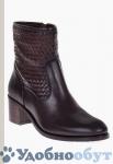 ботинки Roberto Botella арт. 33-11647